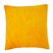 PACHA_CURRY_COUSSIN_CARRE