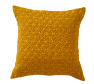 EVEREST_CURRY_COUSSIN_CARRE