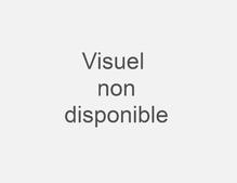 UNIS_SANDERSON_VERVEINE