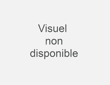 UNIS_SANDERSON_FUCHSI